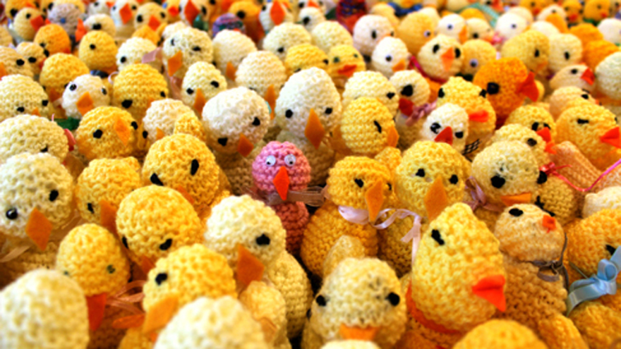 Knit a chick today!