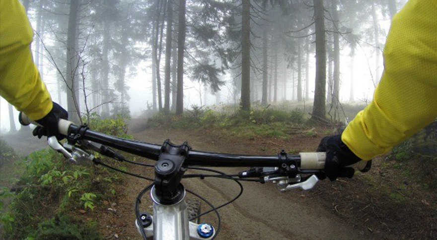 Handlebars on a bike in a misty forest