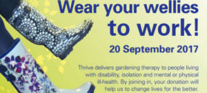 Wear your wellies to work poster