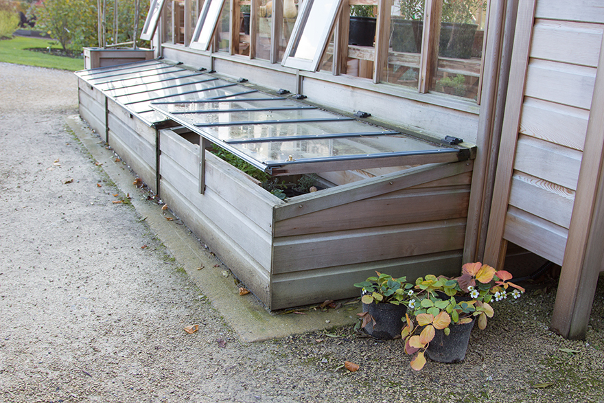 Cold frame against side of shed