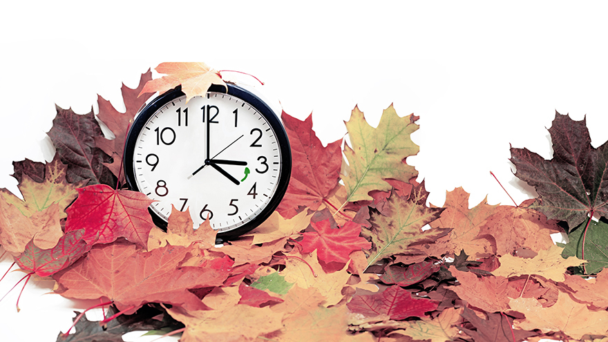 Alarm clock surrounded by autumn leaves