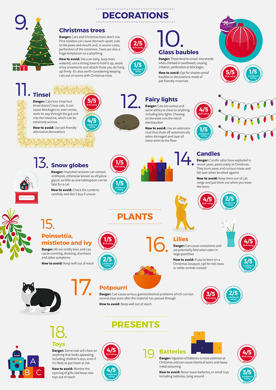 Cat Infogram page 2