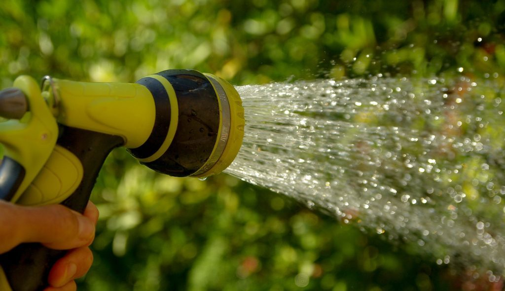 Hose watering in garden