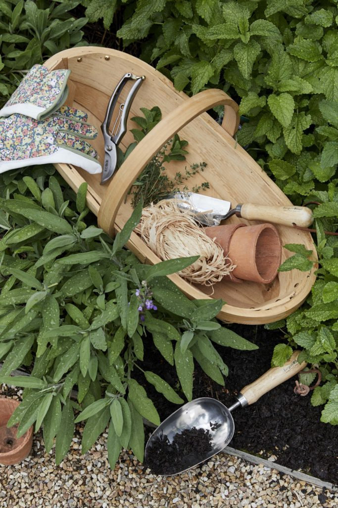 Trug and plant pot