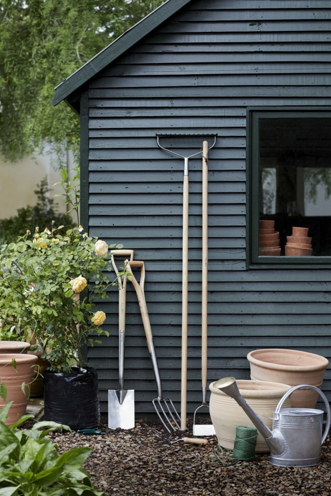Shed and tools