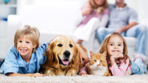 Boy and girl at home with cat and dog Pic: Istockphoto