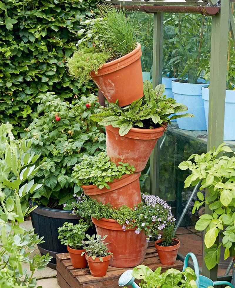 Crooked tower of plant pots with herbs growing in exposed edges of the tops