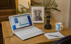 Laptop on desk showing Blue Cross website, framed photo of black labrador behind