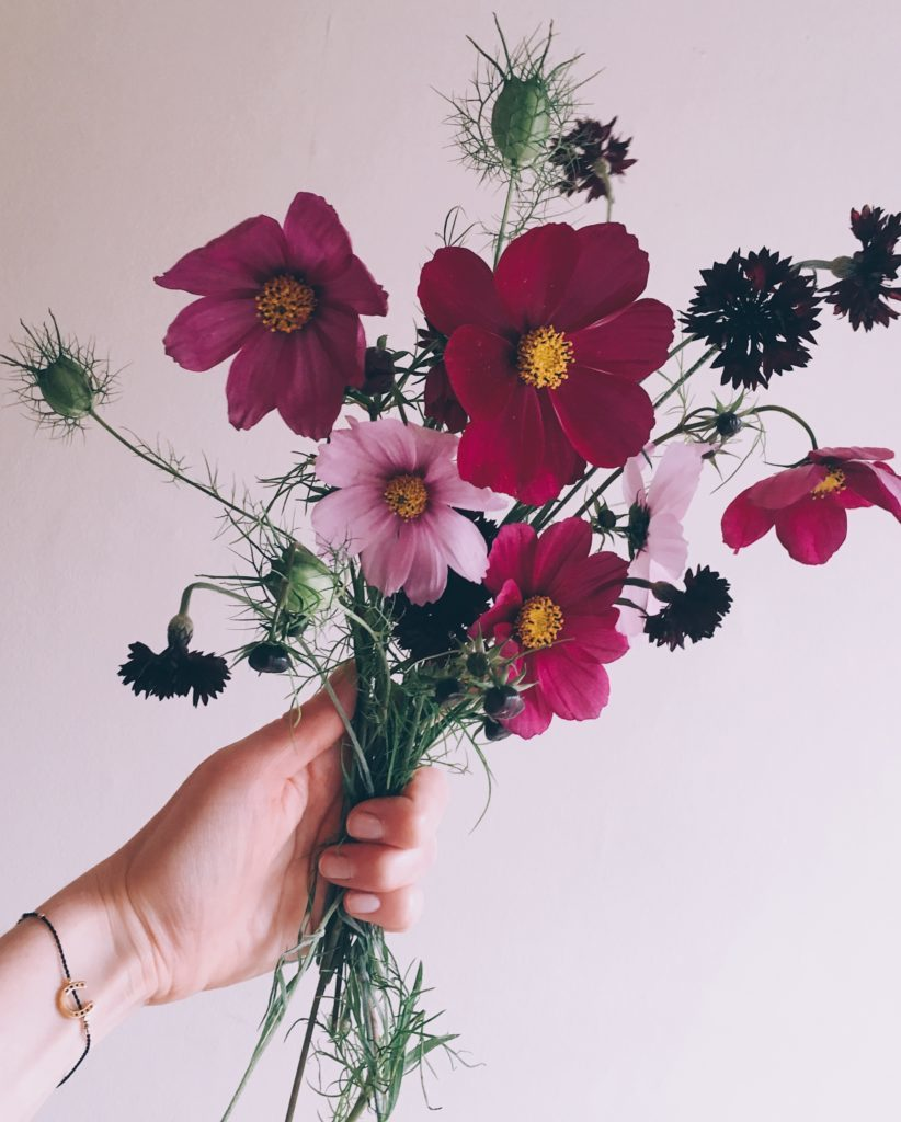 Cut flowers in hand