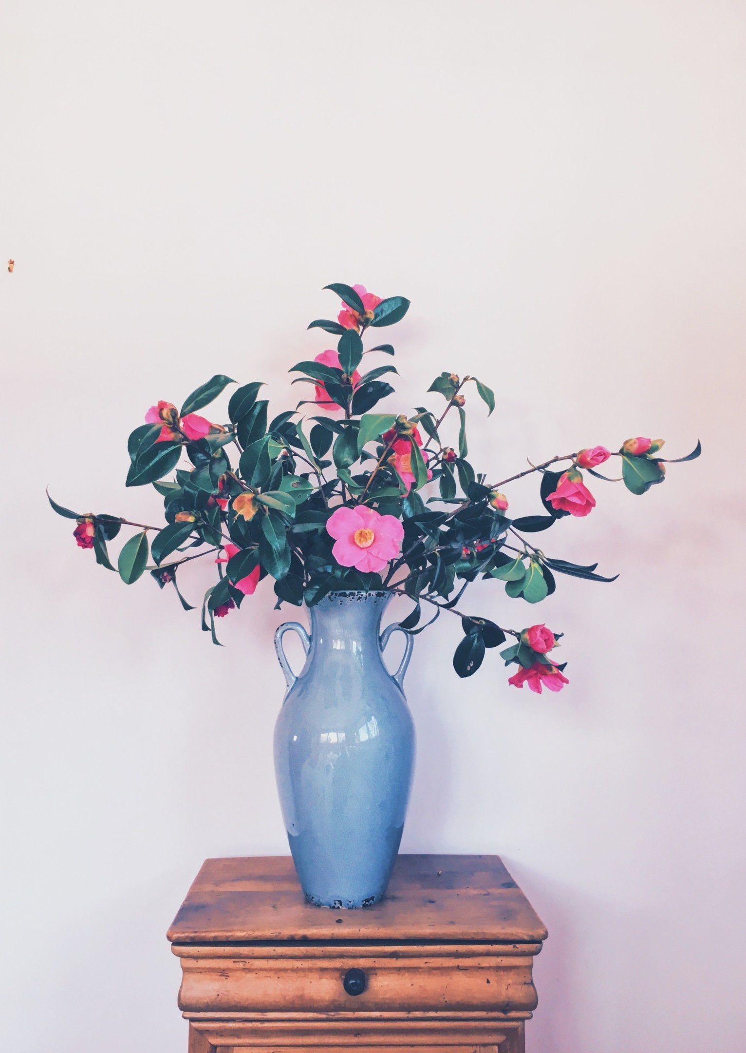 5 insider tips on flower arranging my weekly 1 choosing the right vase and arranging your flowers izmirmasajfo