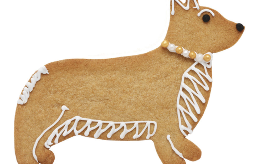 Corgie dog shaped cookie
