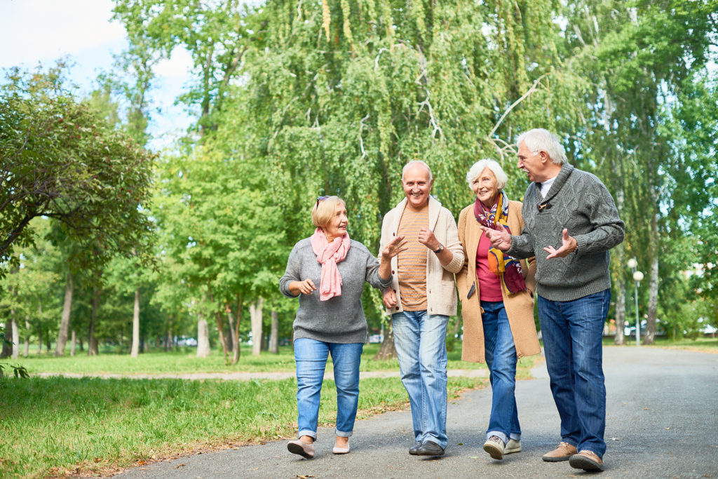 Joyful group of senior friends wearing warm clothes walking along park alley and chatting animatedly with each other, picturesque view on background