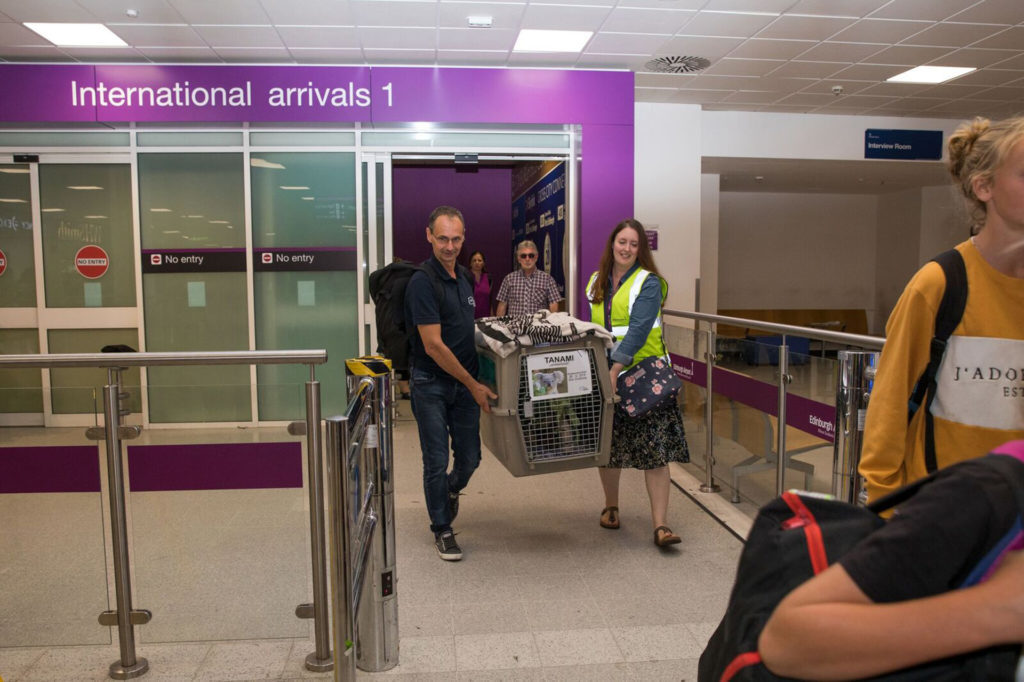 Tanami arrives at Edinburgh airport