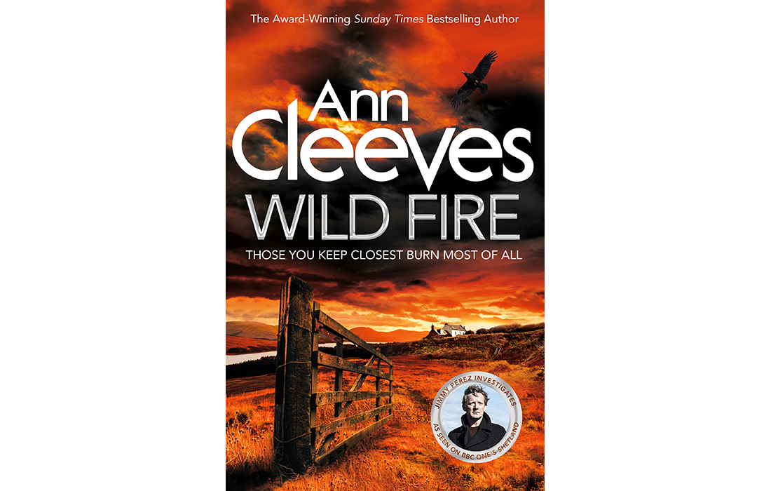 Image result for wild fire ann cleeves