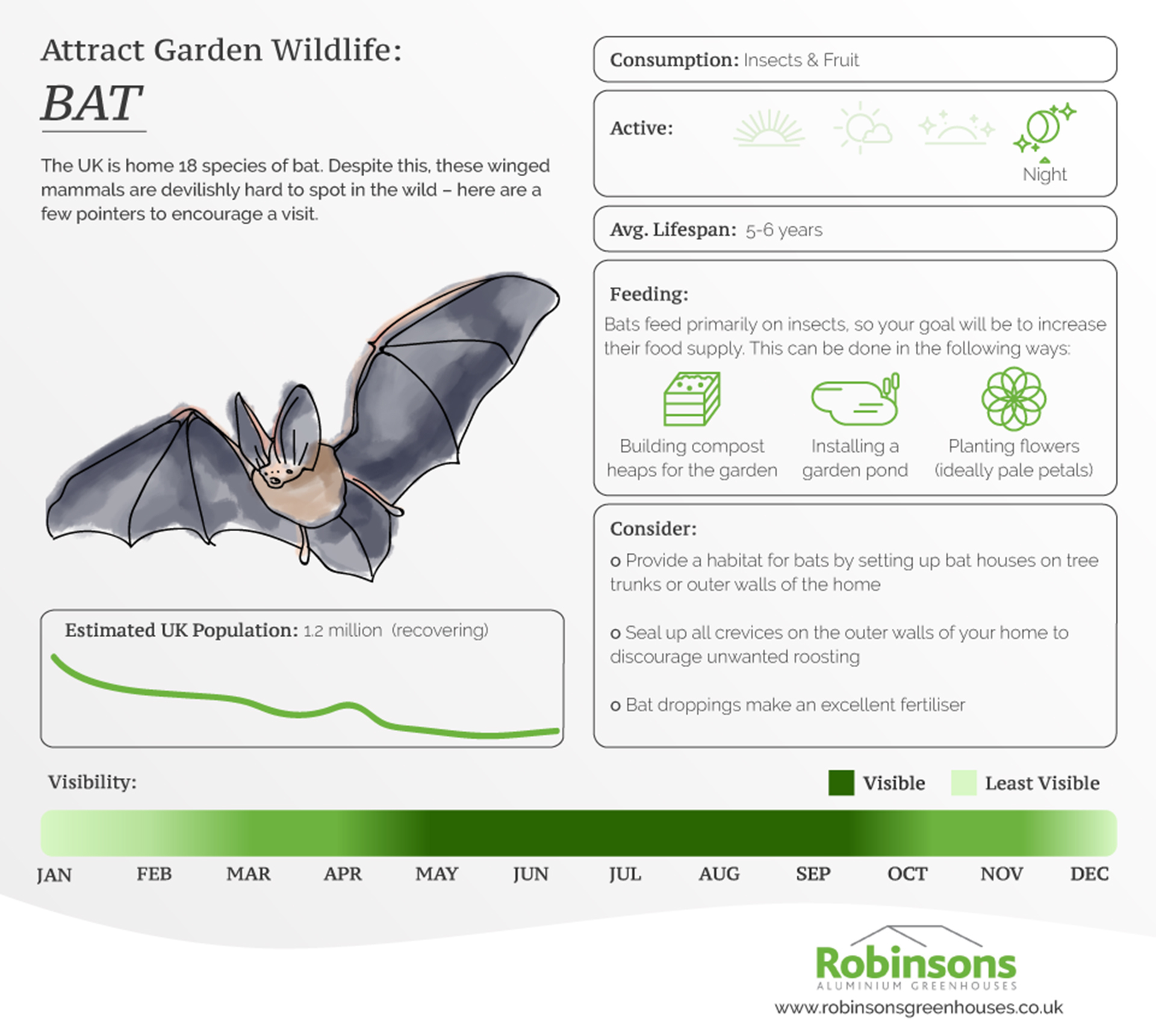 Bat information card
