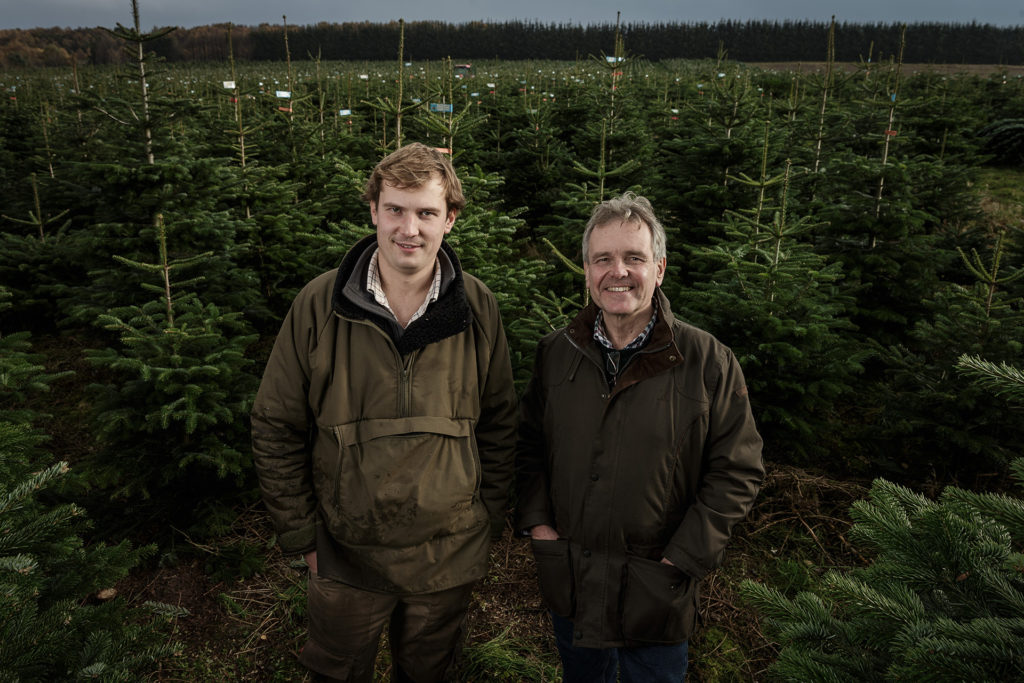 2 men surrounded by Christmas trees