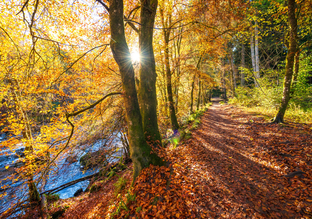 Beautiful Scottish riverside footpath in autumn