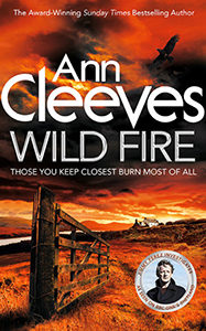 Wild Fire cover