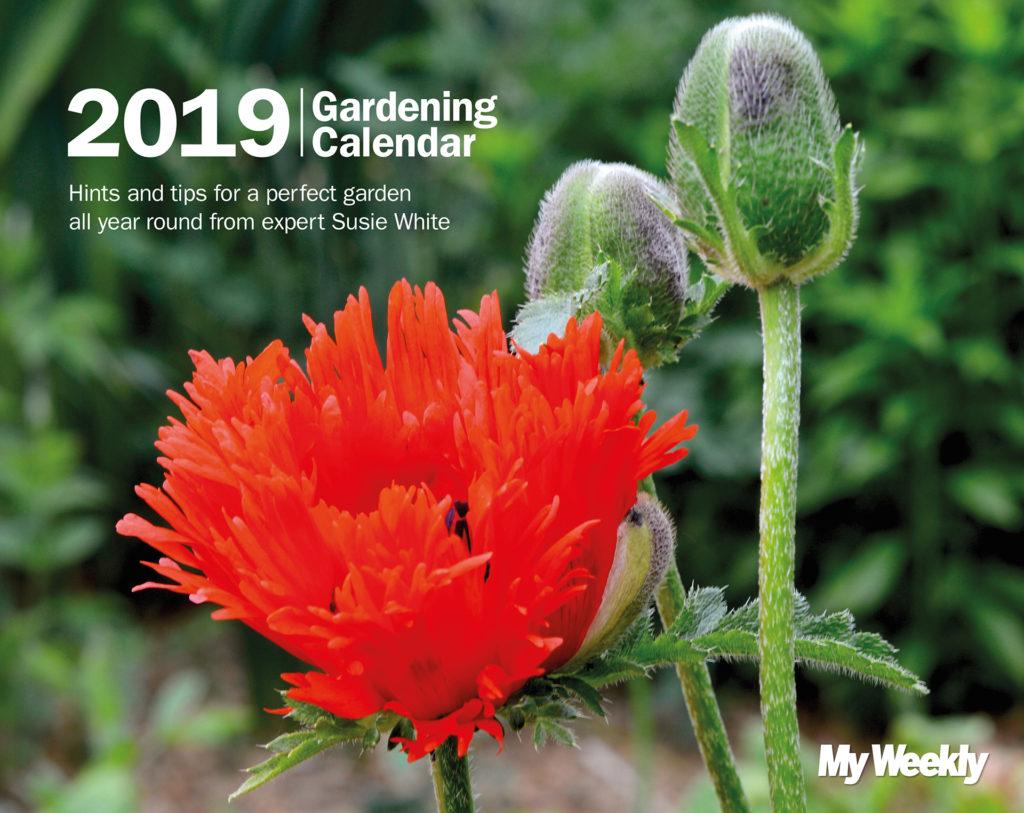 My Weekly Gardening Calendar 2019