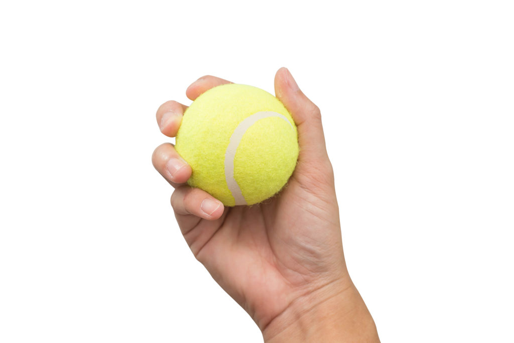 Hand holding tennis ball isolated on white background.