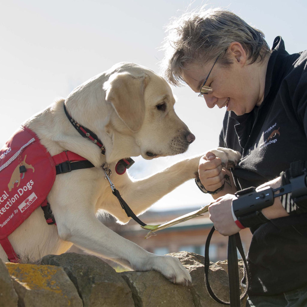 Golden labrador in Medical Assistance Dogs coat putting paw on forearm of smiling woman in outdoor gear