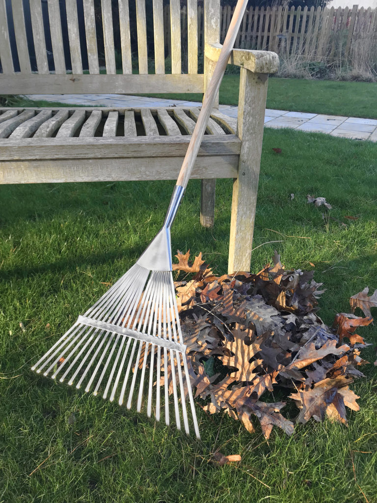 Garden rake with pile of leaves