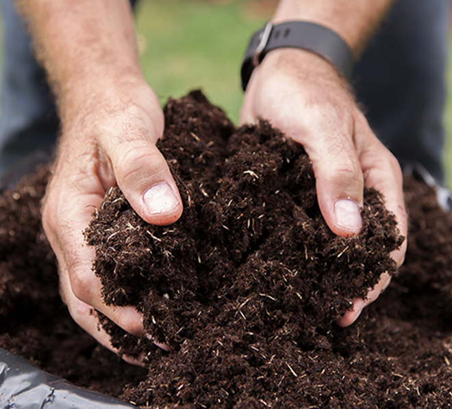 Man with hands in compost Pic: Istockphoto