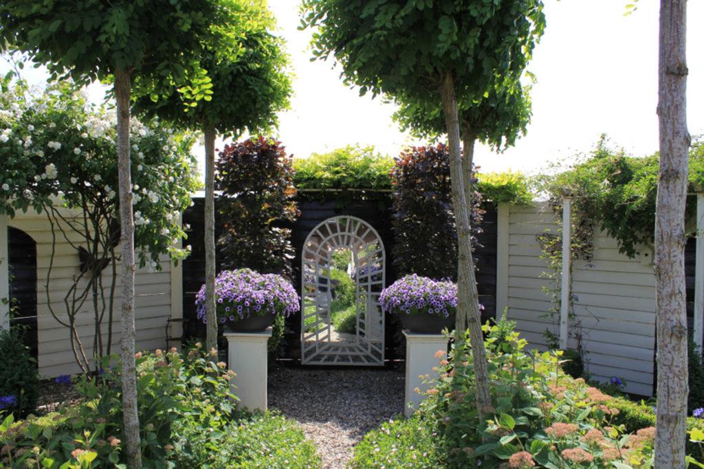 Small garden with a mirror