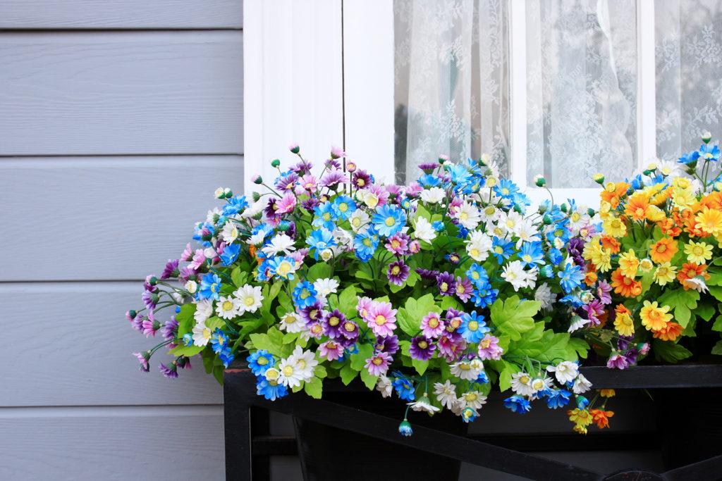 Window and flower box