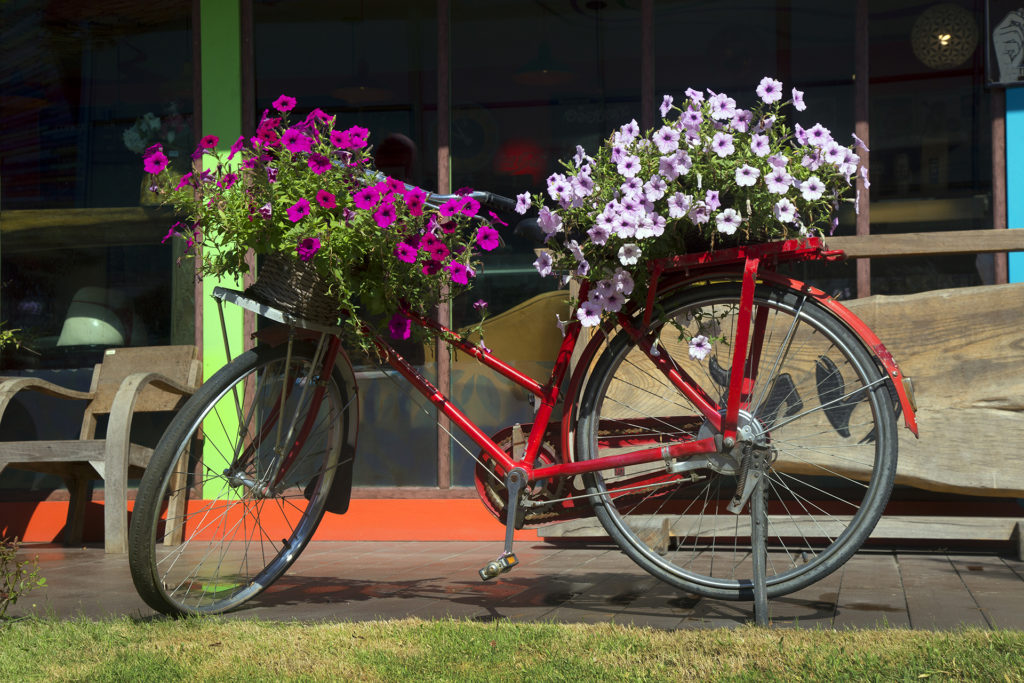Window boxes on bicycle