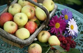Apples and raspberries Pic: Istockphoto