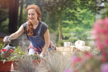Smiling woman in jean dungarees and gloves on hands watering red flowers on terrace on sunny day