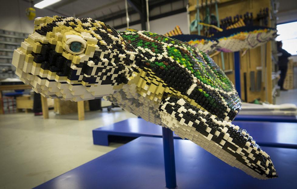 Sea turtle model in BRICKLIVE workshop