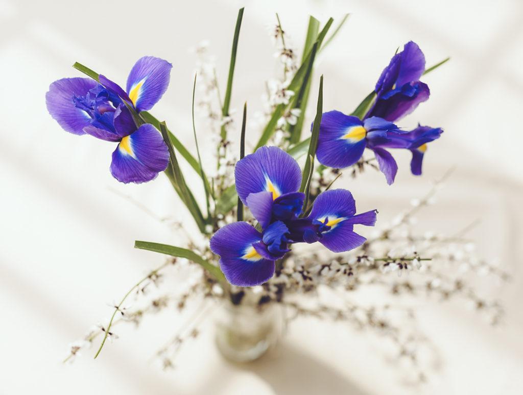 Irises on table Pic: Istockphoto