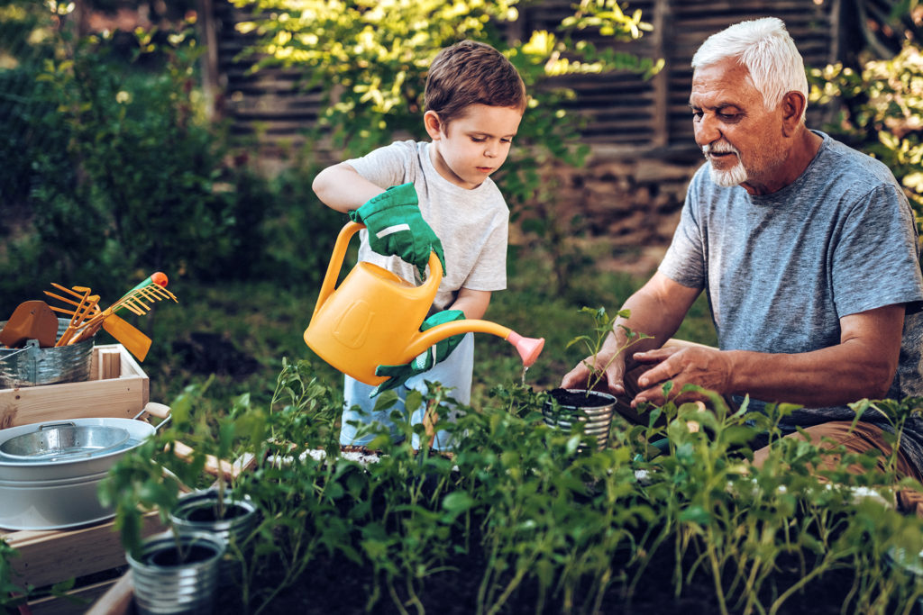 Grandfather and grandson playing in backyard with gardening tools