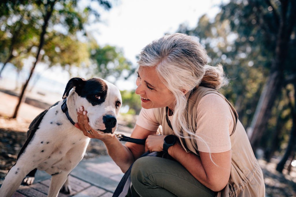 Smiling mature woman enjoying afternoon walk and petting dog in forest park in summer