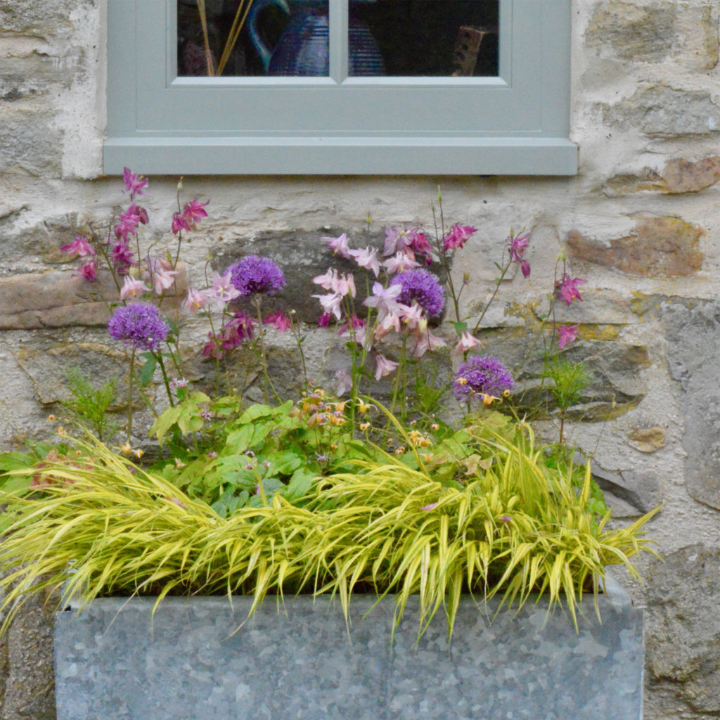 Deep metal trough containing pink and purple flowers and yellow grass, standing against a stone wall under a grey-painted window