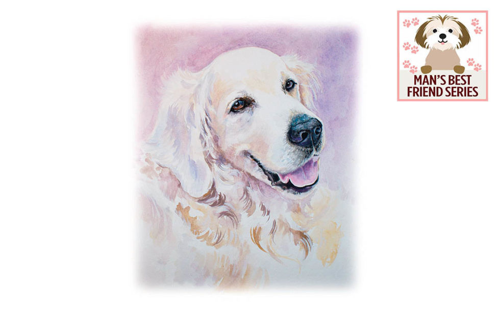 Watercolour portrait of peaceful Golden Retriever