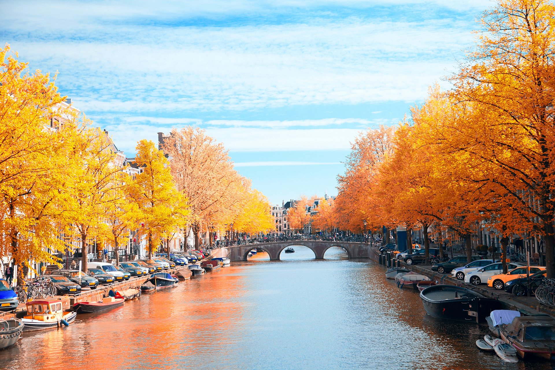 beautiful European capital Amsterdam in the summer. ancient streets and canals.Gold autumn